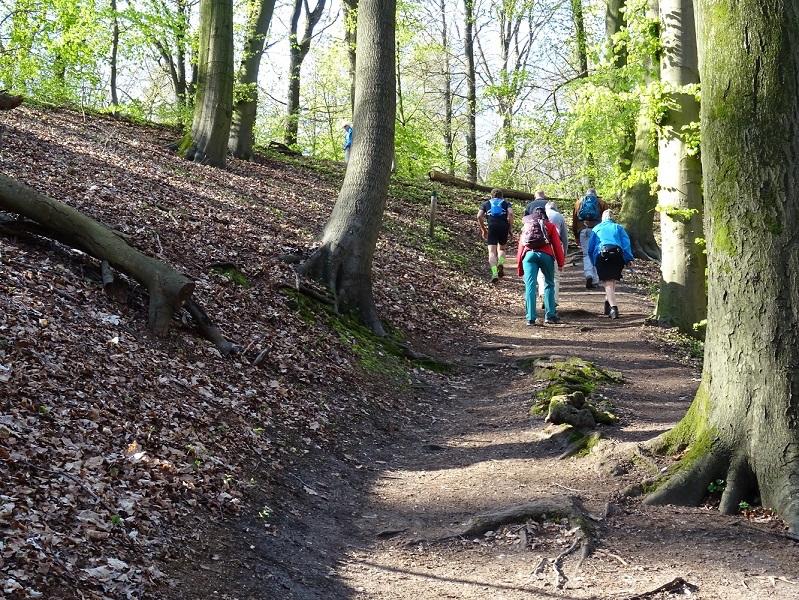 Zondag 29 april Noviomagum wandeltocht vanuit Heilig Landstichting